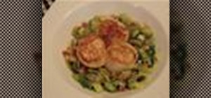 Cook seared scallops with pancetta and leeks
