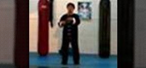 Do basic Tai Chi Chuan moves