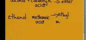 Understand organic molecules in chemistry