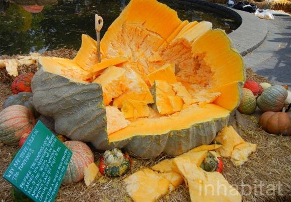 Zombies and Demons Carved Out of 1,818.5 lb Pumpkin