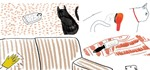 How to Remove Pet Hair from Anything—Anywhere