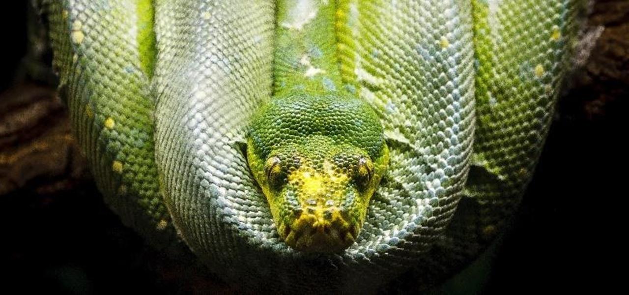 Python Scripting for the Aspiring Hacker, Part 2