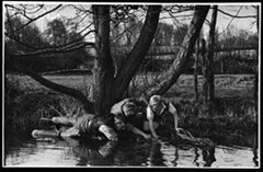 The Art of Trout Tickling: Myth or Reality?
