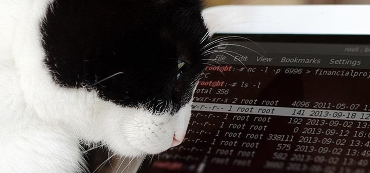 How to Use Netcat, the Swiss Army Knife of Hacking Tools