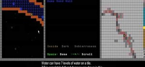 Use the world map and rename your dwarves in Dwarf Fortress