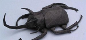 Origami Dung Beetle
