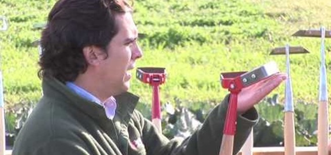 Gardening Get Help In Your Garden With Other