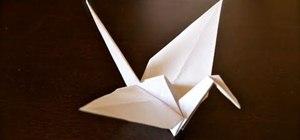 Fold a Paper Origami Crane