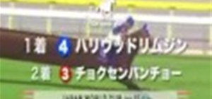 Japan World Cup Horse Racing