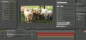 Enable a stereoscopic post workflow in After Effects