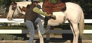 Mount a horse properly to prevent injury