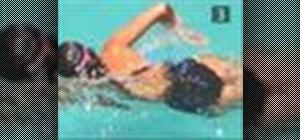 Swim the front crawl
