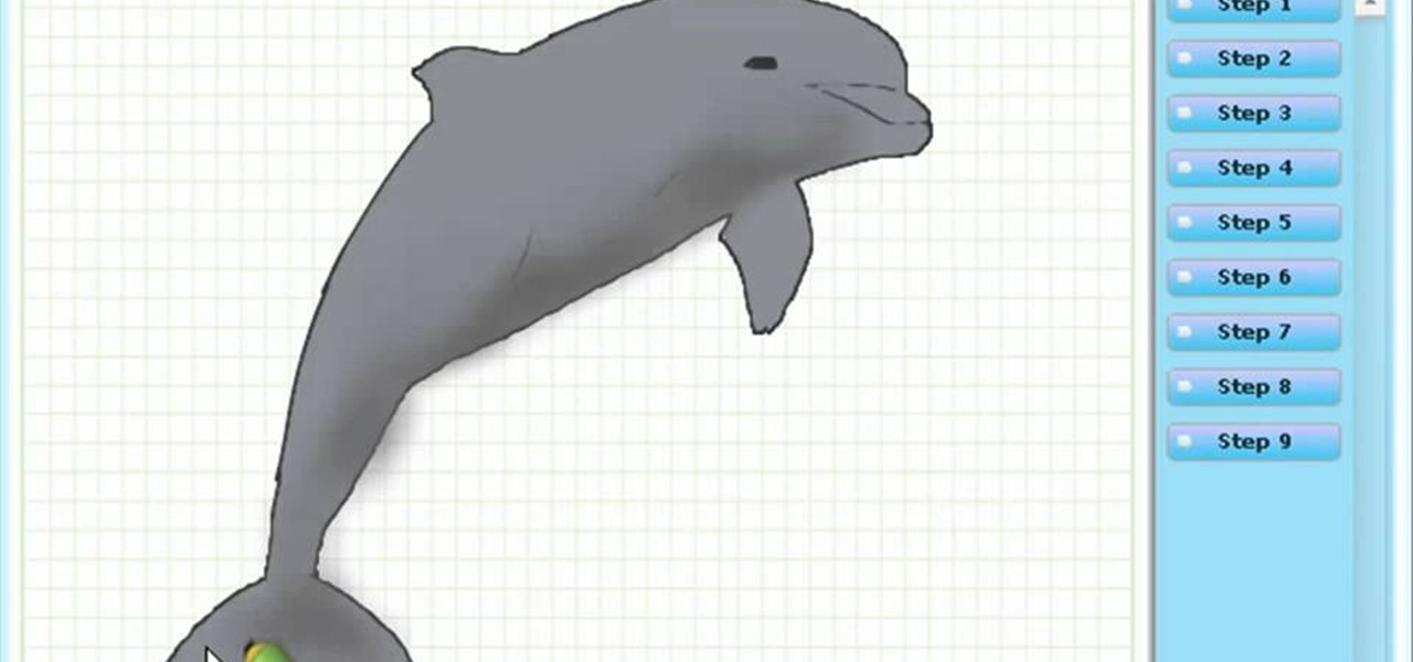 The gallery for --> How To Draw A Bottlenose Dolphin For Kids
