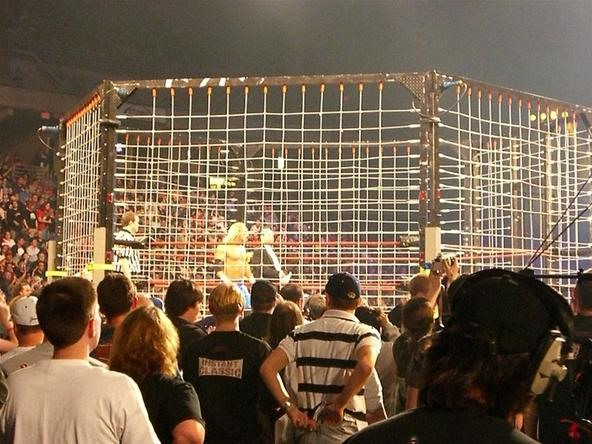 Steel Cage Bull-only match