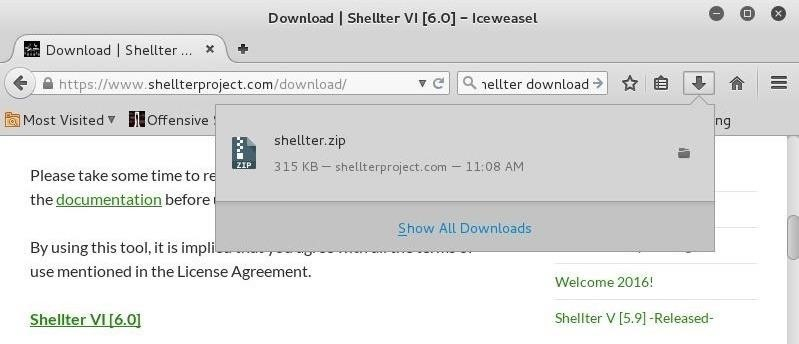 Hack Like a Pro: How to Evade AV Software with Shellter