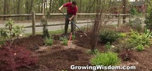 Spread mulch at the right time to improve your garden