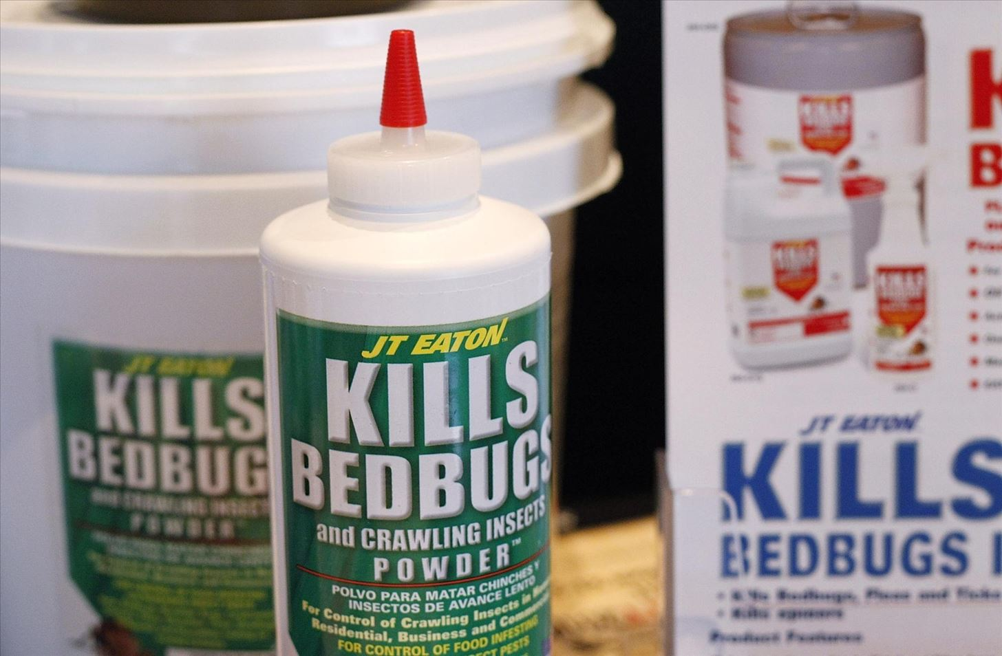 Are There Bedbugs in Your Library Books? Here's How to Spot and Destroy Those Bloodsuckers!