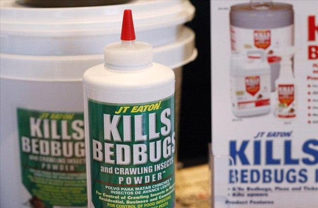 how to get rid of bed bugs yourself 2