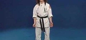 Execute the 9th kyu karate requirements