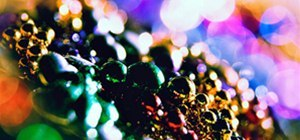 Make Magical Bokeh Photographs