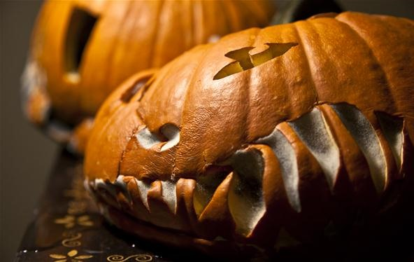 Nature Makes Jack-O'-Lanterns Way Creepier
