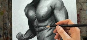 Draw the male upper body (torso, chest and arms)