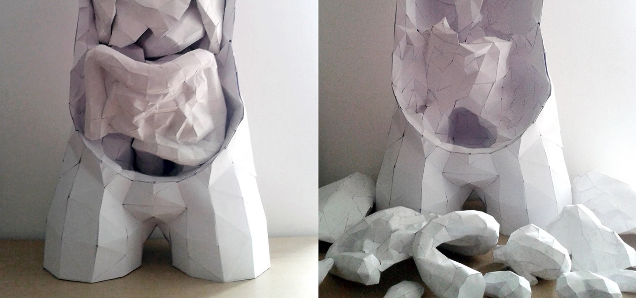 Make This Insanely Detailed & Anatomically Correct Human Torso—Complete with Removable Organs
