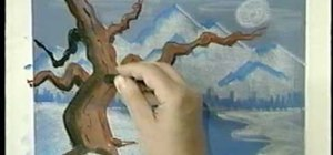 Draw a tree in moonlight