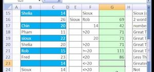 Use the SUMIF function in Microsoft Excel 2007