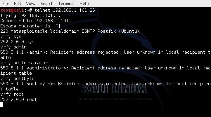 Hack Like a Pro: How to Extract Email Addresses from an SMTP Server