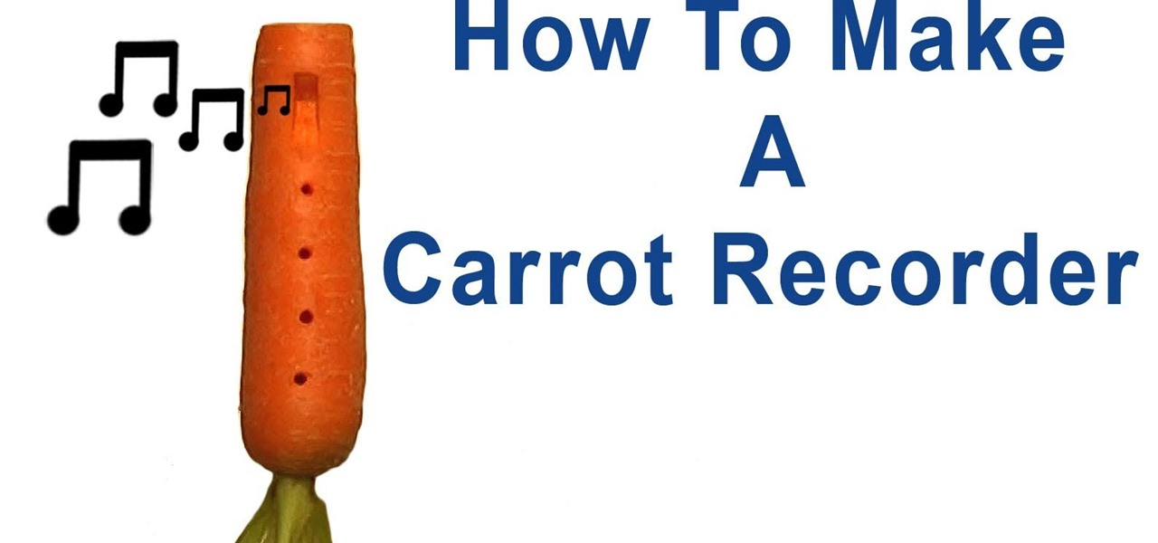 Make a Carrot Recorder