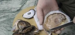 Shuck an oyster using the hinge method
