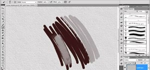 Create and paint with custom brushes in Adobe Photoshop CS5