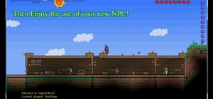 Attract an NPC in Terraria