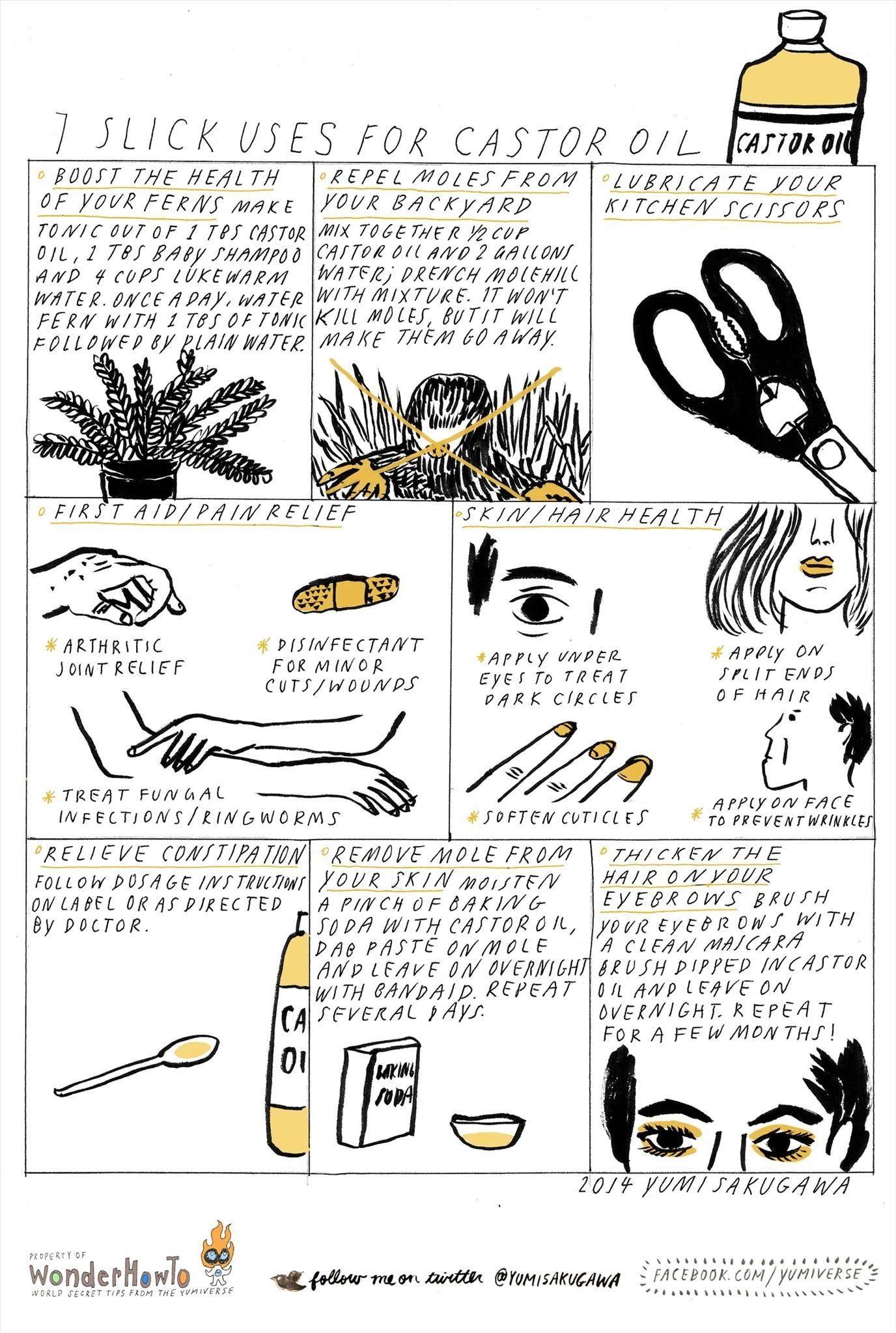 7 Slick Uses for Castor Oil