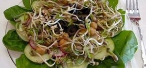 Make a fresh healthy mung bean sprout salad with Betty