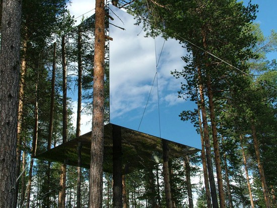 The Invisible Treehouse