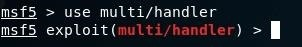 MetaSploit: When I Do 'Use Multi/Handler' It Is Different for Me Than for Others.