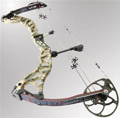 How to Maintain the Powerful BowTech Destroyer Hunting Bow