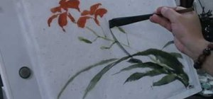 Paint a Daylily in the traditional Chinese style