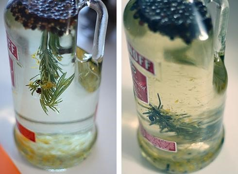 HowTo: Brew Your Own Bathtub Gin (Well, Sorta)