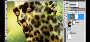 Use the Undo, History & Revert tools in Photoshop