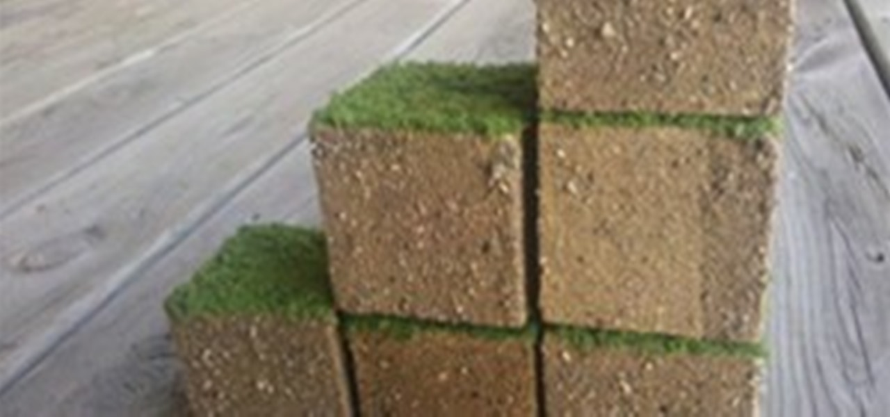 Real Life Grass Minecraft Cube