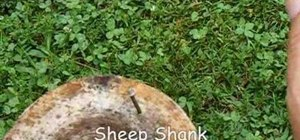 Tie a sheep bend knot for camping