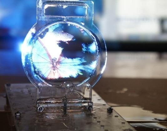 Colloidal Display Turns Soapy Bubbles into a Transparent 3D Projection Screen