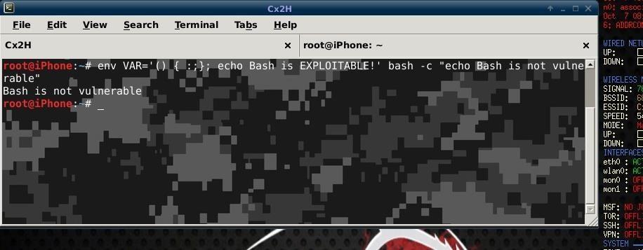BASH SHELLSHOCK: Am I Still Vulnerable? - a Different Approach for Linux.