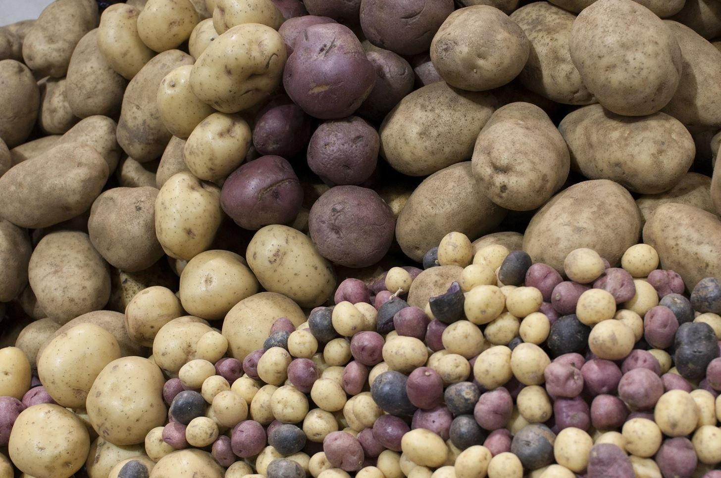 The Ultimate Potato Cheat Sheet: Which Potato Goes Best with What?