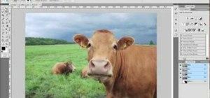 Simulate depth of field in Adobe Photoshop