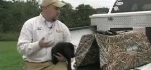 Train a dog to use a field blind to hunt water fowl